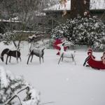 Portland gets a white Christmas