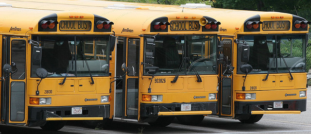 School buses | Photo: Twix